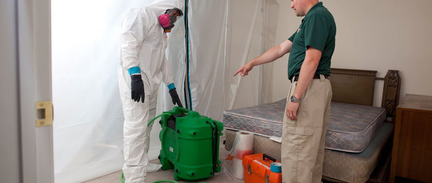 Silver Spring, MD mold removal process